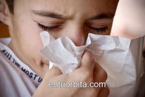 Por qué estornudamos mucho